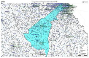 GA House District 127 map