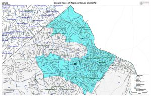 GA House District 124 map
