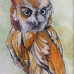 Owl by: Colleen Beyer,Watercolor and Pastel on Paper, 9